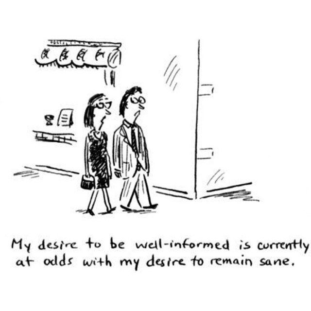 My desire to be well-informed is currently at odds with my desire to remain sane.  #desire #information #news #fake #sane #privacy #cartoon
