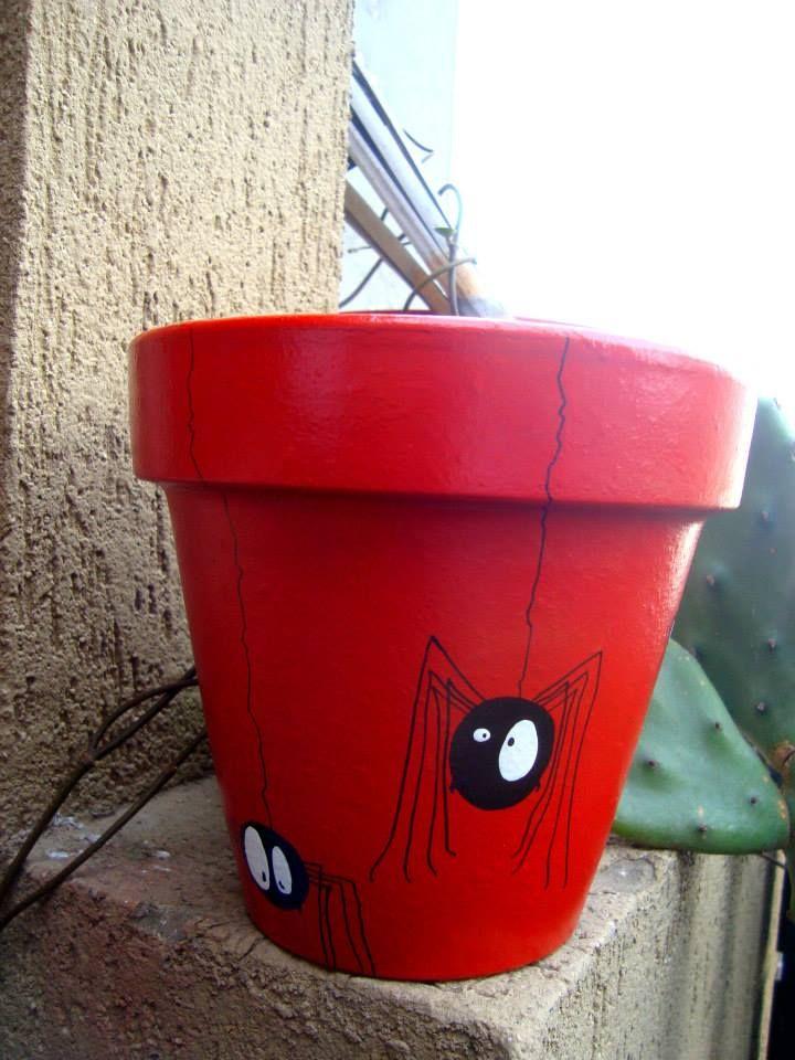 spider flower pot