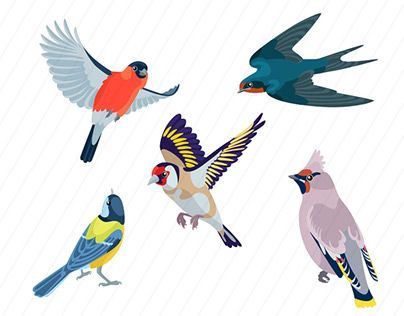 """Check out new work on my @Behance portfolio: """"Birds in wild and seamless patterns with birds"""" http://be.net/gallery/41518677/Birds-in-wild-and-seamless-patterns-with-birds"""