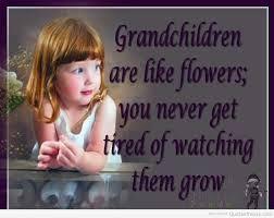 Afbeeldingsresultaat voor quotes about grandchildren