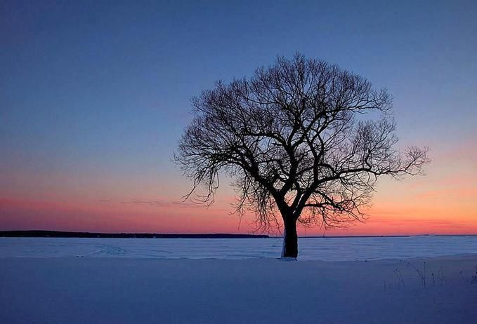 ~ Just after Sunset ~: Photo by Photographer Paul Pluskwik - photo.net