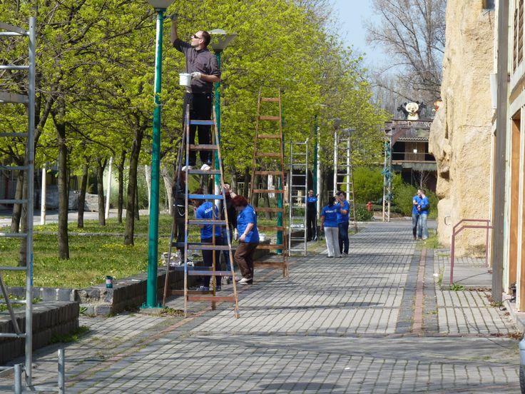 2014. április - Önkéntes munka az Állatkertben