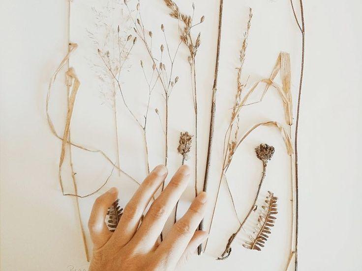 DIY-Anleitung: Bild mit getrockneten Blumen gestalten via DaWanda.com