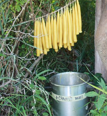 Sustainable Living in August: Hand-dipped Beeswax Candles. If you roll the dipped wicks on a flat surface at an early stage, they become and stay straight (unlike the ones on this blog).