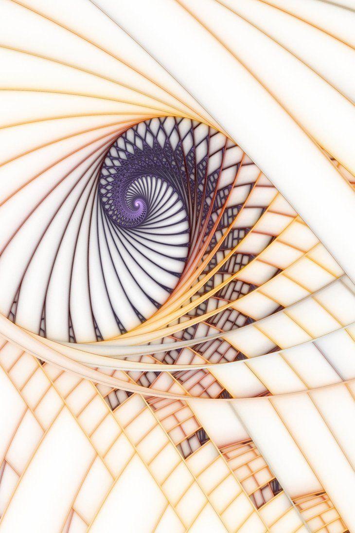 Paper Spirals by Scott Ferman