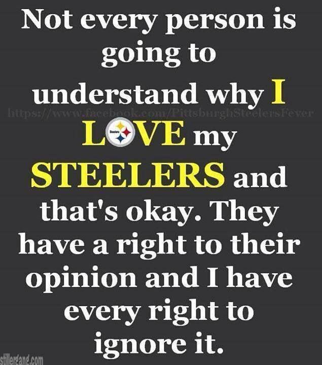 Steelers rock! They rule the NFL! Ravens r terrible!