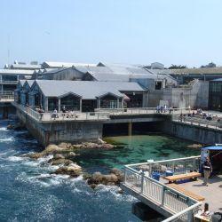 Best 25 Monterey Bay California Ideas On Pinterest Monterey Bay Hotels In Carmel Ca And