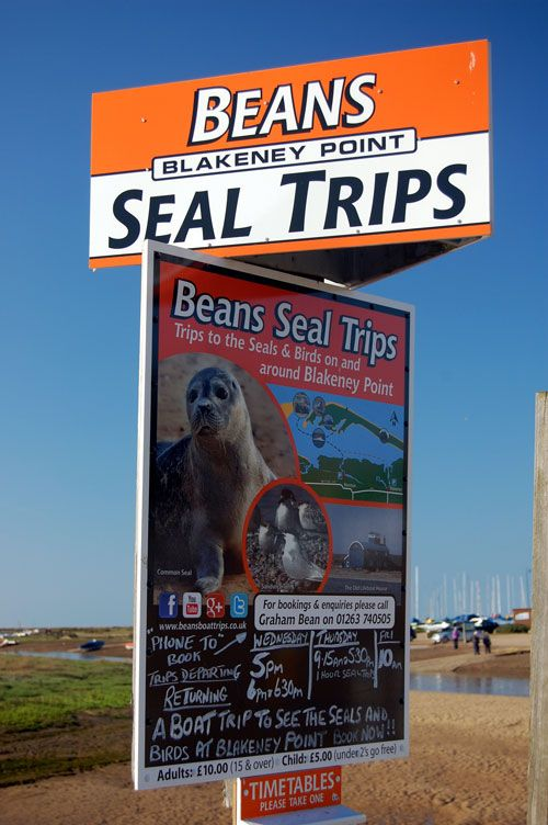 Seal Trips Blakeney North Norfolk coast-a trip by boat to see the grey seals off Blakeney Point. Boats leave from Morston & Blakeney Quay.