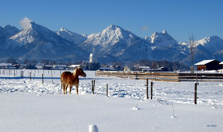 View towards the Alps. Allgäu, Germany, winter of 2010. Photo by Johannes Beilharz.
