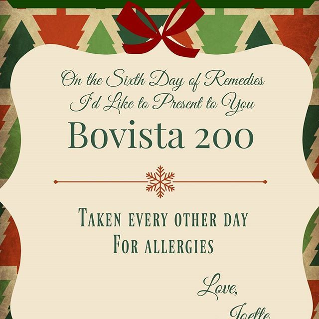 On the 6th Day of Remedies my true love gave to me... Bovista 200. Take it every other day for allergies. #The12DaysOfRemedies