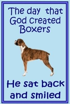 Boxer owners - just for you - one of over 200 breeds in our ebay store.