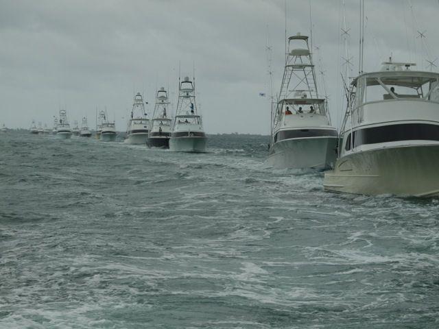 312 best images about sportfish on pinterest sedans for Deep sea fishing marina del rey