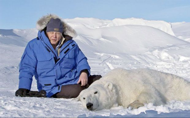 Sir David Attenborough has said his grandchildren may not see polar bears after seeing first hand the impacts of global warming on the North Pole for the final episode of Frozen Planet.