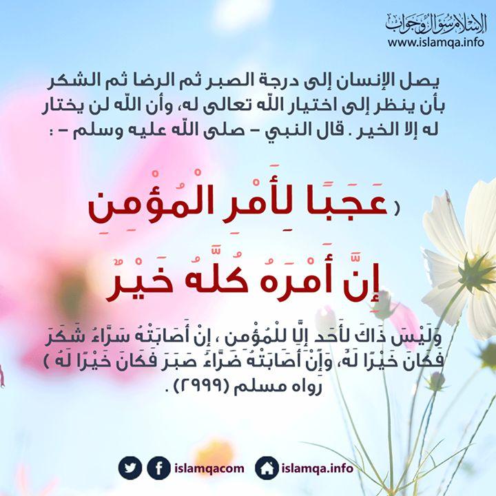 صلاة ما قبل العصر Arabic Calligraphy Math Calligraphy