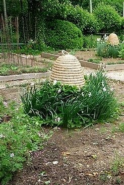 Bee Skep In Garden.