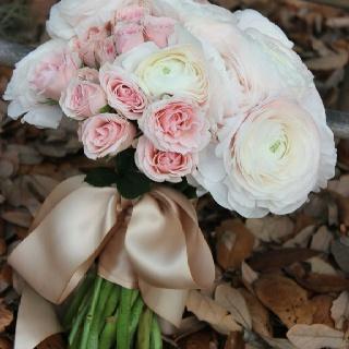 Ranunculus, pink roses, tan satin ribbon