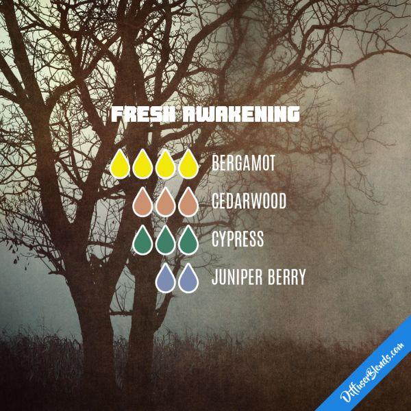 Fresh Awakening - Essential Oil Diffuser Blend