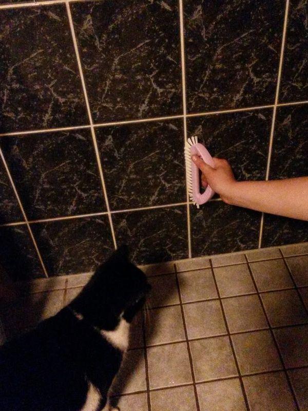 Pääsin Hopottajana mukaan testaamaan Sinin uutta kylpyhuoneen jynssäriä. Pinttynytkin lika lähti hyvin saumoista, mutta hieman liukeni myöskin saumausainetta mukana. Tykkäsin kuitenkin! http://www.sinituote.fi/roosanauha #sinijynssäri #sinituotehopo #roosanauha2015 www.hopottajat.fi