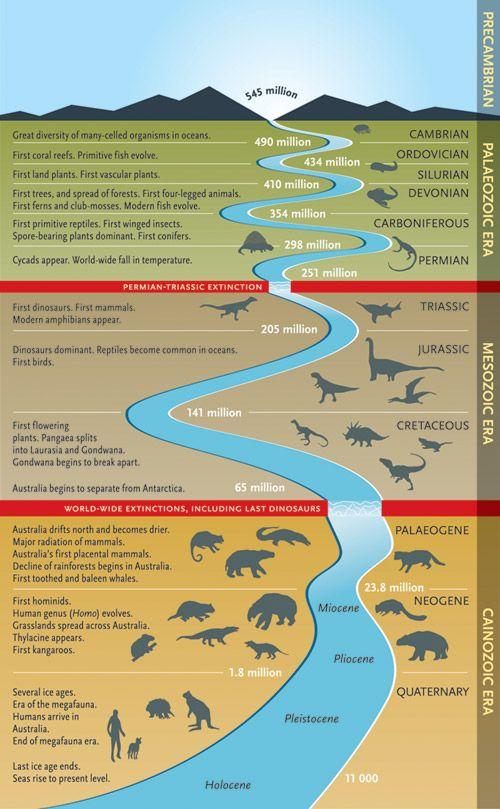 dinosaur time line