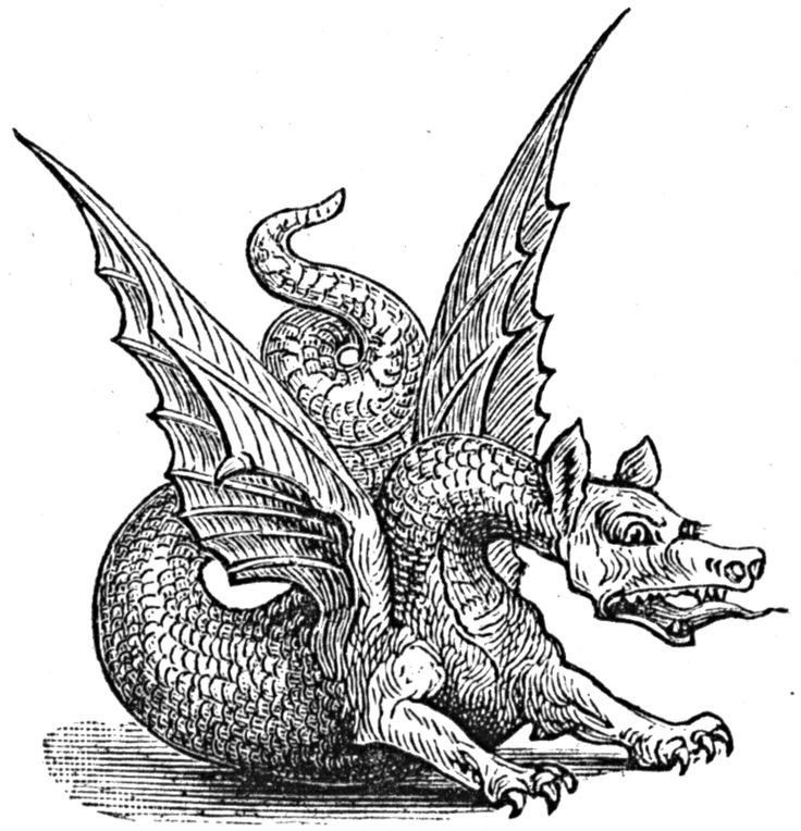 dragon.jpg (774×804)