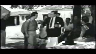 ο μαυρογιαλούρος - YouTube