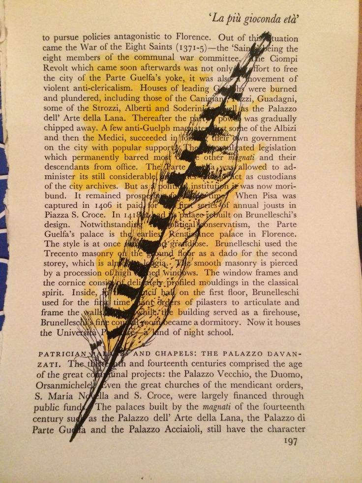 Pheasant feather- felt tip pen and water colour - upcycle