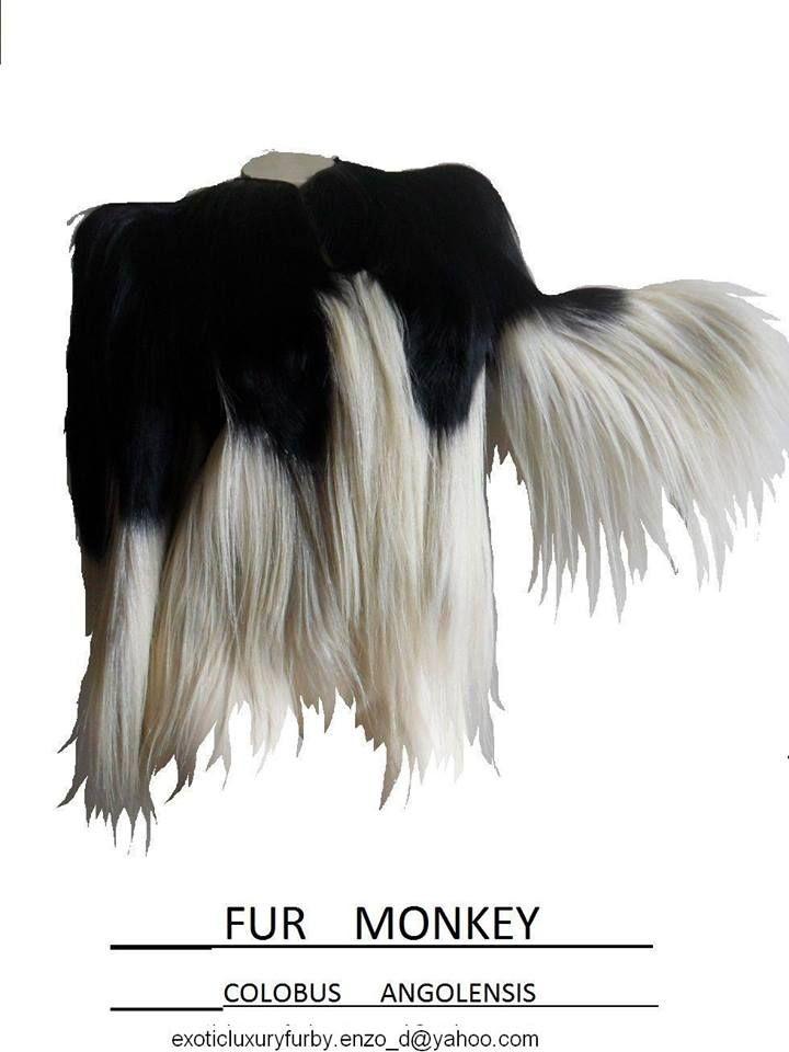 fur monkey colobus angolensis by Enzo D'Amato designer