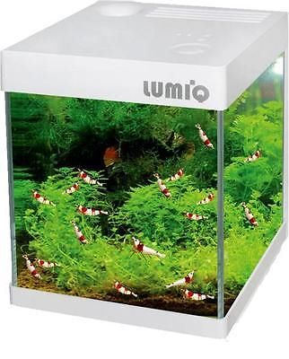 Other Fish and Aquarium Supplies 8444: Of Ocean Free Lumi Q 2 Nano Tank (20 L) For Crystal Shrimp With Ipod Iphone Dock -> BUY IT NOW ONLY: $79.95 on eBay!