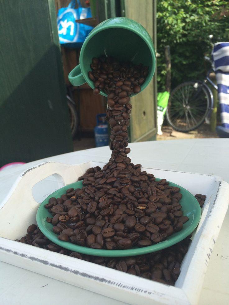 Zwevend kopje koffiebonen
