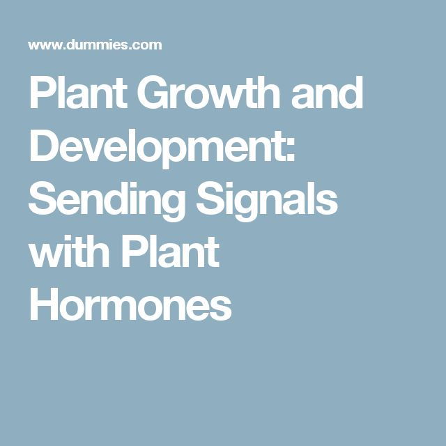 hormones helps with growth and development Growth hormone (gh), also known as somatotropin (or as human growth hormone [hgh or hgh] in its human form), is a peptide hormone that stimulates growth, cell reproduction.