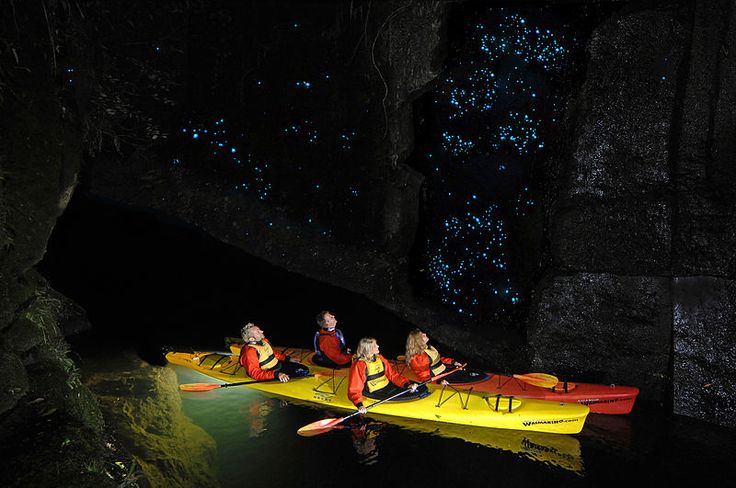 Waimarino Glow Worm Kayak Tour at Lake McLaren, Tauranga, New Zealand.