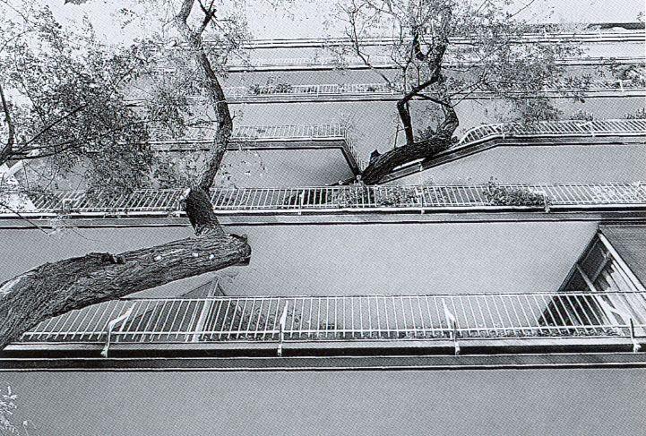 Via Marchioni, Milán. Ignazio Gardella (1949-1954):