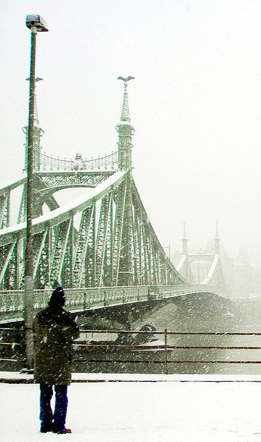 The Liberty Bridge in #Budapest, Hungary, connects Buda and Pest across the River Danube.