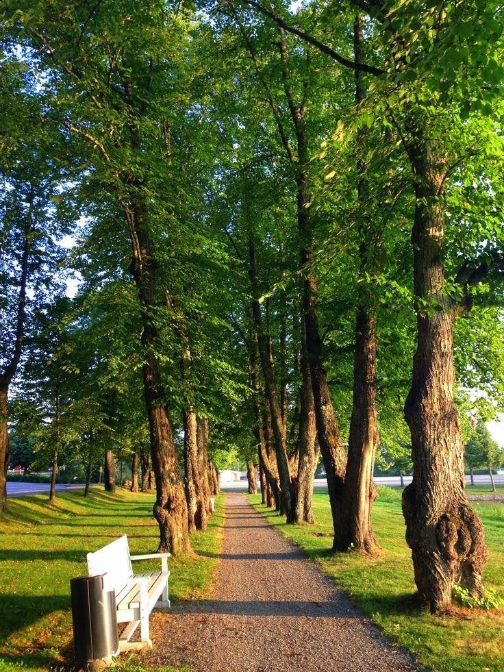 Ikaalinen / Ikalis, Finland
