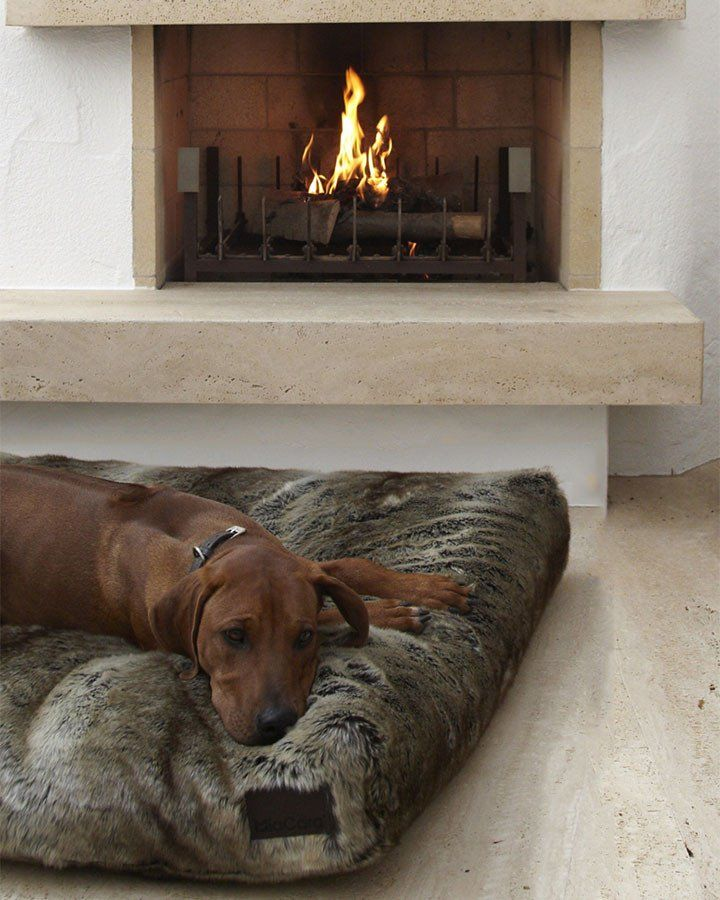Hundepude (Sort-Brun) - Felpa - Petlux
