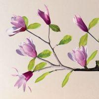 Kidzsupplies | Nouvelles Images muursticker magnolia | Webwinkel voor baby- en kinderkamer decoratie
