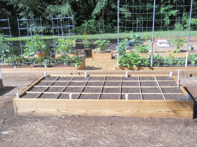 Square Foot Gardening Forum   GardenWeb. 17 Best images about SQUARE FOOT GARDENING on Pinterest   Gardens