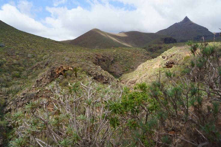 Near to Roque Imoque / Tenerife