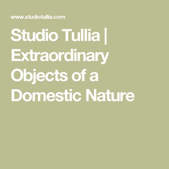 Studio Tullia   Extraordinary Objects of a Domestic Nature