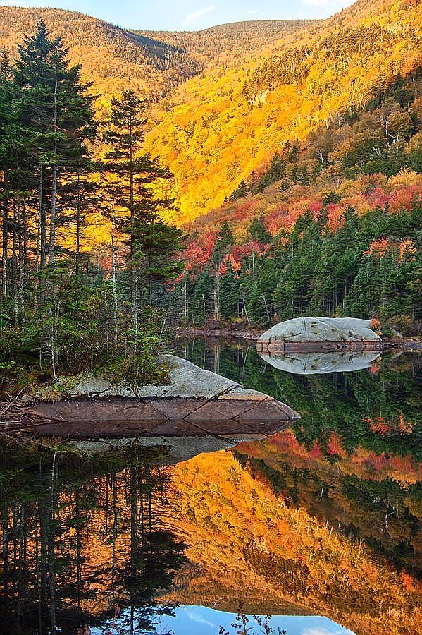 ✯ Beaver Pond, New Hampshire, USA