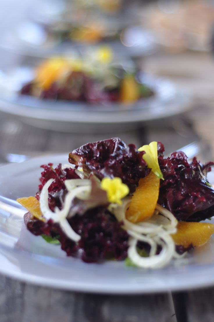 Purple lettuce, with fennel, orange, mint, and sour grass, with a chive blossom vinaigrette
