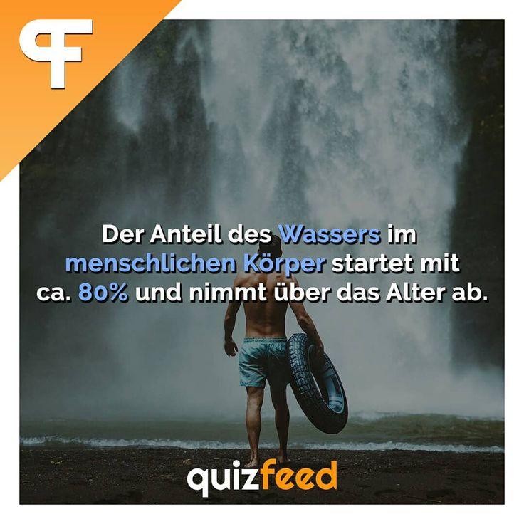 Der Anteil des Wasser im menschlichen Körper startet mit ca. 80% und nimmt über das Alter ab. Wissen clever verpackt! . #Wasser #körper #mensch #fakten #biologie #fitness #sportlich – quizfeed