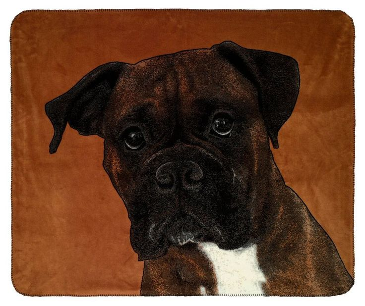 Knitting Patterns For Boxer Dogs : The 519 best images about Dogs & Puppies on Pinterest Tapestries, Wall ...