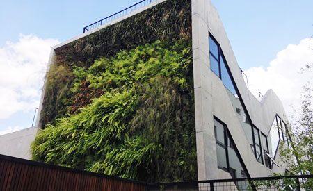[Vídeo] A construção de um jardim vertical na cidade de São Paulo
