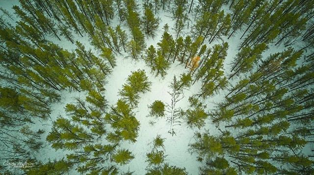 Great drone shot by @caseysisterson in Mars Hills, MB #EasternMB #ExploreMB #Manitoba