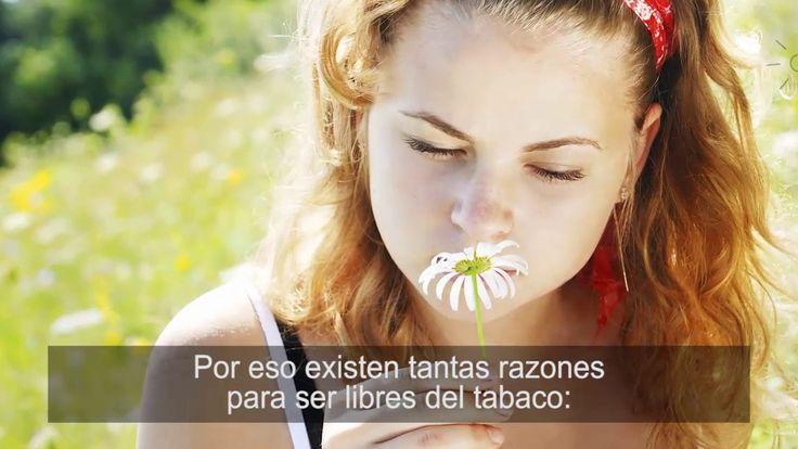 Puedes dejar el Tabaco - Recursos Prácticos para Hacerlo