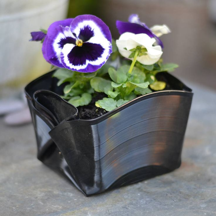These highly unique retro plant pots are made from folding unwanted vinly recordsEach plant pot is moulded by hand from a selection of old vinyl records. As a result no two pots are the same which really adds to their character and appearance. Old vinyl records make an ideal material for plant pots because they will not deteriorate over time. The hole in the centre of each record acts as a drainage hole at the bottom of each pot. Made from: Each pot is made from one un-wanted 12inch vinyl…