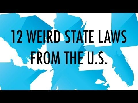 Best Funny Laws Images On Pinterest Funny Laws Weird Laws - The most bizarre laws of the us get broken in this ironic photo series