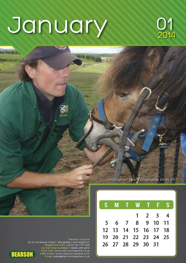 A4 Equine Dentistry Wall Calendar: All proceeds go to Redwings Horse Sanctuary and The Egypt Horse Project.  http://www.dearsonequine.co.uk/2014-calendar/equine-dentistry-calendar-2014.html  #equestriangifts #equine #horses #charity #equinedentistry #equinevets #animallovers