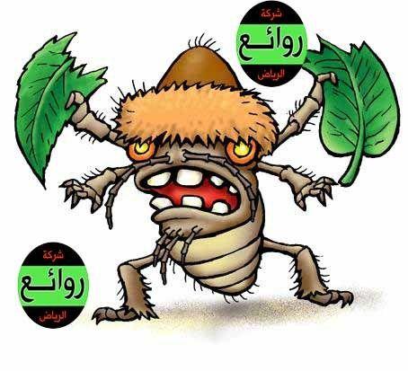 مكافحة حشرات بالقصيم 0548953613